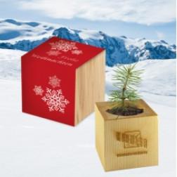 Pflanz-Holz Xmas