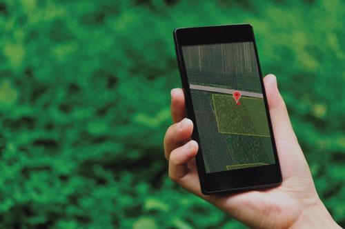 Mittels Blumencode lokalisieren Ihrer Blumenwiese